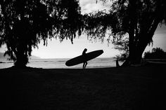 ♒ ✌ Surf Blog ✌ ♒