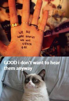 I swear I channel Grumpy Cat sometimes.  :)