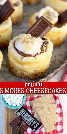Mini S'mores Cheesecakes are the ultimate summer dessert for cookouts, barbecues and celebrations #missinthekitchen #smores #cheesecake #minidesserts