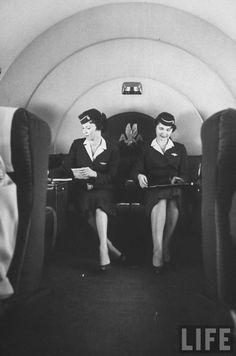 American Airlines Stewardesses