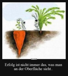 Erfolg ist nicht immer das, was man an der Oberfläche sieht.. | Lustige Bilder, Sprüche, Witze, echt lustig