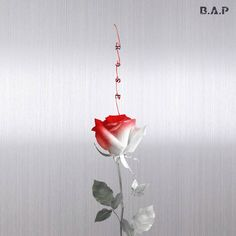 [MV & Album Review] B.A.P - 'Rose / Wake Me Up' http://www.allkpop.com/article/2017/03/mv-album-review-bap-rose-wake-me-up