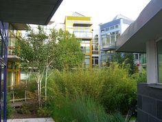 Managing Stormwater: 8 Shades of Green Infrastructure | SPUR