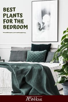 Unique Home Decor, Home Decor Items, Furniture Decor, Bedroom Furniture, Best Air Purifying Plants, Bedroom Plants, Nature Decor, Bedroom Art, Air Purifier