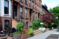 Brooklyn landlords pushing black tenants out for whites:suit
