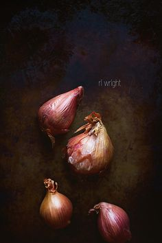 dark bg with nice lighting. shallots