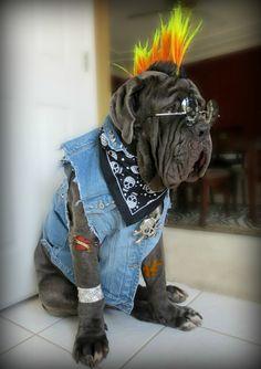 Rufio rocks!!!