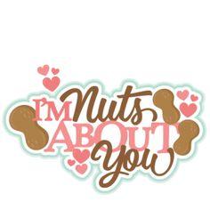 imnutsaboutyoutitle011217 saved under Valentines