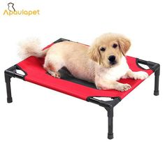 Cheap cat dog bed, Buy Quality large dog bed directly from China dog bed Suppliers: Huge Pet Large Dog Bed Mat Waterproof Outdoor Casas De Perros Hammock Pet House Basket Puppy Pet Cat Dog Beds For Large Dog Cheap Dog Beds, Dog Beds For Small Dogs, Large Dogs, Outdoor Dog, Indoor Outdoor, Dog Cots, Dog Water Bowls, Orthopedic Dog Bed, Cat Dog
