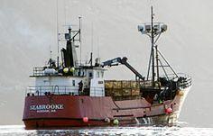 Seabrooke