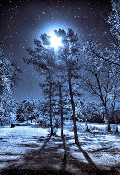 """The moon on the breast of the new-fallen snow gave the lustre of midday to objects below."""