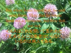 But whenJesusheard that, he said unto them,They that be whole need not a physician, but they that are sick.イエスはこれを聞いて言われた、「丈夫な人には医者はいらない。いるのは病人である。