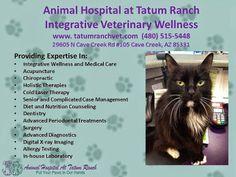 Animal Hospital At Tatum Ranch - Google+