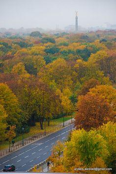 Berlin Tiergarten Autumn Colours