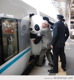 empujar Oso panda para entrar tren japón
