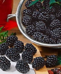 3 Chester Thornless Blackberry Plants, Organically Grown, Best in Zone (Pack of 3 Bare Root Plants) Thornless Blackberries, Growing Blackberries, Blackberry Plants, Benefits Of Berries, Fresh Farmhouse, Fruit Photography, C'est Bon, Fruits And Veggies, Farmers Market