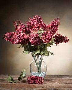 Oakleaf Hydrangea Si