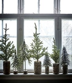 Mini trees in wood chunks for Christmas and winter.
