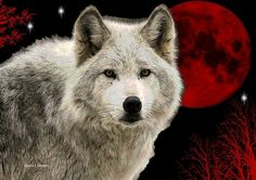 White Wolf Art Red Blood Moon Southwestern by GrayWolfGallery