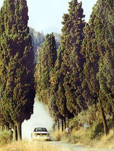 Audi WRC