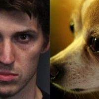 Reno Justice Court: Deny bail to the Nevada man suspected of adopting six dogs in order to torture and dismember them