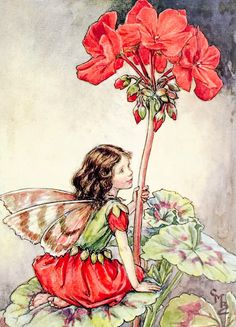 Illustration for the Geranium Fairy for 'Flower Fairies of the Garden'. A girl fairy kneels facing right on a geranium leaf, holding on to the flower stem with her left hand. By illustrator, Cicely Mary Barker Cicely Mary Barker, Flower Fairies, Fairies Garden, Geranium Flower, Fairy Pictures, Vintage Fairies, Fantasy Illustration, Fairy Art, Illustrators