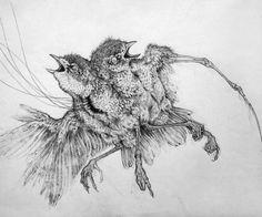 CAITLIN HACKETT - Tiny Pencil