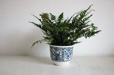 Vintage ceramics, delfts floral decor pot planter by Boch Belgium 1960s old dutch blue decor, vintage home decor, indoor green plant holder by Original20 on Etsy https://www.etsy.com/listing/566200663/vintage-ceramics-delfts-floral-decor-pot