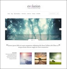 70+ wordpress themes for gallery / portfolio