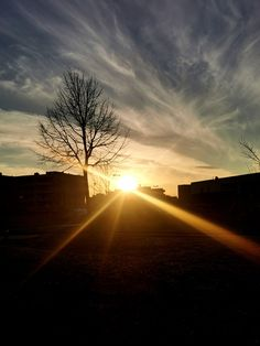 Al calar del sole salutando i suoi raggi #sunset #citysunset #tramonto #shine #sunbeams #city #colors Shinee, Ph, Country Roads, Celestial, Sunset, Outdoor, Outdoors, Sunsets, Outdoor Games
