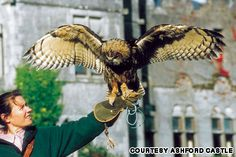 At Ireland's Ashford Castle, a 141-hectare property on the shores of Lough Corrib and River Cong, a resident owl named Dingle is always available to swoop in with an engagement ring around his neck. Dingle has also been known to deliver notes and messages.