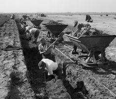 DUW-arbeiders in de Peel (ca. 1948)....Martien Coppens.