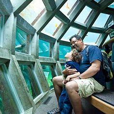 Underwater Dome at Seattle Aquarium Seattle, WA #Kids #Events