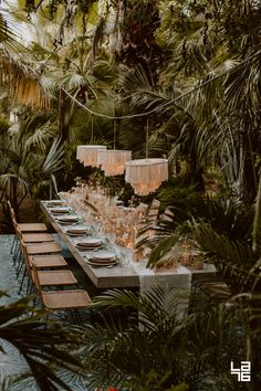 Enchanting Jungle Wedding Reception at Acre, Baja. Private jungle area for an intimate wedding reception or private celebration.