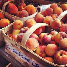 Fresh #peaches at the Marion Square farmers market in #Charleston, S.C. Photo by explorecharleston • Instagram