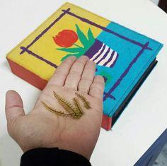 Album of plants #fern #natural #jewelry