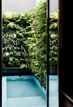 Swimming pool: The swimming pool is surrounded by a lush vertical garden, connecting the home seamlessly to the outdoors and nature. Patio Design, Exterior Design, Garden Design, Garden Bathroom, Garden Architecture, Interior Architecture, Small Pools, Plunge Pool, Swimming Pool Designs