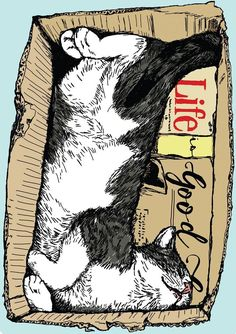 Life Is Good Happy Cat Illustration by Anna Palamar #CatIllustration
