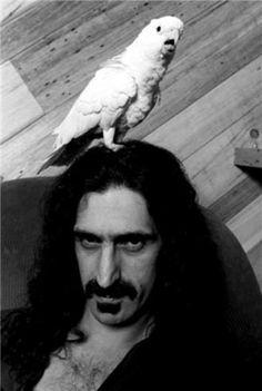 Frank Zappa - Neal Preston 1979
