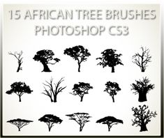 15 African Tree Brushes PSCS3 by charfade on deviantART