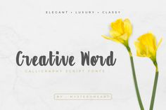 Creative Word is a modern calligraphy font, ideal for use in any type of project that needs a friendly and.