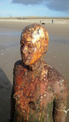 Antony Gormley - Crosby Beach - Feb 2016 Object Relations Theory, Antony Gormley Sculptures, Crosby Beach, Andy Goldsworthy, Sir Anthony, Artistic Installation, Art Sculpture, Lovely Creatures, Paul Cezanne