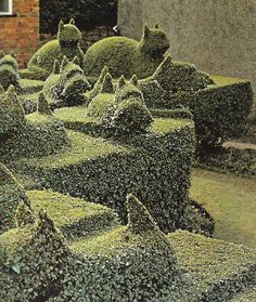 Amazing Topiary Garden / Garden Design / repinned by Toby Design