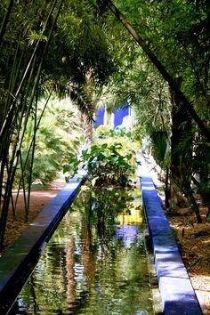 Régis Cariou - Garden in Morroco