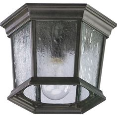 Quorum International Q7930-1 1 Light Flushmount Outdoor Ceiling Fixture with Cle