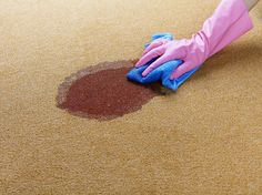 If you need to remove vomit from carpet you need cleaning supplies that will deal with the stain and the smell. These steps will help remove vomit.