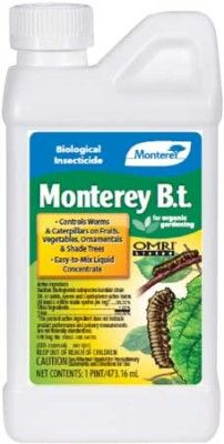 Bacillus thuringiensis - Bt kurstaki (16oz) | Planet Natural