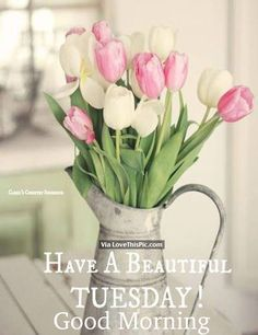 Have A Beautiful Tuesday, Good Morning good morning tuesday tuesday quotes good morning quotes happy tuesday good morning tuesday quotes happy tuesday morning tuesday morning facebook quotes tuesday image quotes happy tuesday good morning