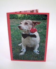 Chihuahua Greeting Card I Love You Dog Card by Lillyzcardz on Etsy, $4.00