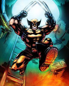 Wolverine by Cyril Sinel